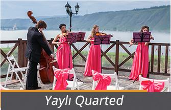 yayli